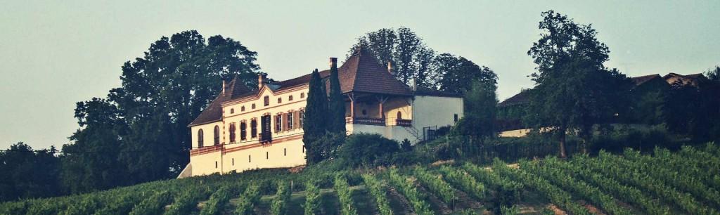 Accueil_chateau_labastidie 2 baniere
